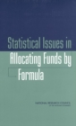Statistical Issues in Allocating Funds by Formula - eBook