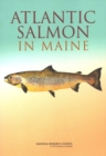 Atlantic Salmon in Maine - eBook