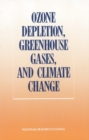 Ozone Depletion, Greenhouse Gases, and Climate Change - eBook