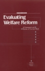 Evaluating Welfare Reform : A Framework and Review of Current Work, Interim Report - eBook