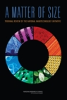 A Matter of Size : Triennial Review of the National Nanotechnology Initiative - eBook