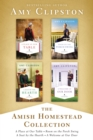 The Amish Homestead Collection : A Place at Our Table, Room on the Porch Swing, A Seat by the Hearth, A Welcome at Our Door - eBook