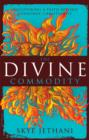 The Divine Commodity : Discovering a Faith Beyond Consumer Christianity - eBook