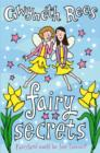 Fairy Secrets - eBook