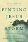 Finding Jesus in the Storm : The Spiritual Lives of Christians with Mental Health Challenges - eBook
