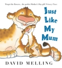 Just Like My Mum - Book