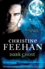 Dark Ghost - eBook