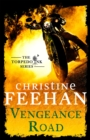 Vengeance Road - Book