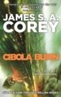 Cibola Burn : Book 4 of the Expanse (now a major TV series on Netflix) - Book