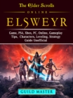 The Elder Scrolls Elsweyr, PS4, Xbox One, PC, Online, Classes, Armor, Weapons, Tips, Strategy, Game Guide Unofficial - eBook