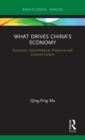 What Drives China's Economy : Economic, Socio-Political, Historical and Cultural Factors - Book