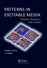 Patterns in Excitable Media : Genesis, Dynamics, and Control - Book