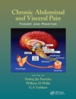 Chronic Abdominal and Visceral Pain : Theory and Practice - Book