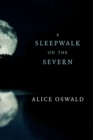 A Sleepwalk on the Severn - Book