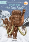 What Was the Ice Age? - eBook