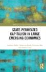 State-permeated Capitalism in Large Emerging Economies - eBook