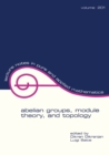 Abelian Groups, Module Theory, and Topology - eBook