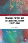 Criminal Theory and International Human Rights Law - eBook