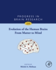 Evolution of the Human Brain: From Matter to Mind - eBook