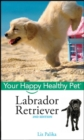 Labrador Retriever, with DVD : Your Happy Healthy Pet - eBook