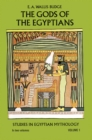 The Gods of the Egyptians, Volume 1 - eBook