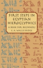 First Steps in Egyptian Hieroglyphics - eBook