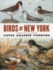 Birds of New York : Over 100 Plates - Book