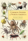 Common Spiders of North America - Book