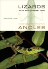 Lizards in an Evolutionary Tree : Ecology and Adaptive Radiation of Anoles - eBook