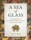 A Sea of Glass : Searching for the Blaschkas' Fragile Legacy in an Ocean at Risk - eBook