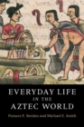 Everyday Life in the Aztec World - Book