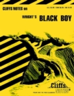 CliffsNotes on Wright's Black Boy - eBook
