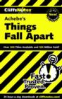 CliffsNotes on Achebe's Things Fall Apart - eBook