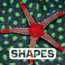 Shapes - eBook