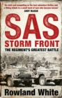 Storm Front - Book