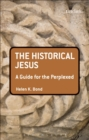 The Historical Jesus: A Guide for the Perplexed - eBook