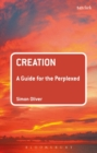 Creation: A Guide for the Perplexed - Book
