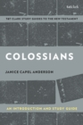 Colossians: An Introduction and Study Guide : Authorship, Rhetoric, and Code - eBook