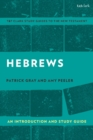 Hebrews: An Introduction and Study Guide - Book