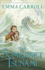 The Somerset Tsunami - eBook