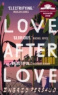 Love After Love : The most electrifying novel you will read all year - Book