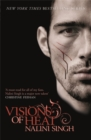 Visions of Heat : Book 2 - Book