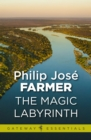 The Magic Labyrinth - eBook