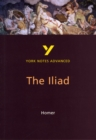 The Iliad: York Notes Advanced - Book