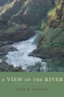 A View of the River - Book