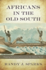 Africans in the Old South : Mapping Exceptional Lives across the Atlantic World - eBook