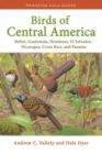 Birds of Central America : Belize, Guatemala, Honduras, El Salvador, Nicaragua, Costa Rica, and Panama - Book
