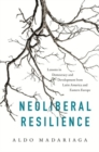 Neoliberal Resilience : Lessons in Democracy and Development from Latin America and Eastern Europe - Book
