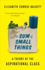 The Sum of Small Things : A Theory of the Aspirational Class - Book