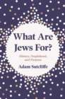 What Are Jews For? : History, Peoplehood, and Purpose - Book